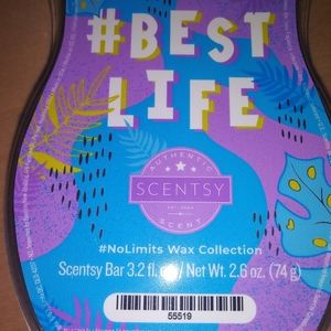 🐞 5 for $25 🐞 Scentsy Wax Bar Best Life